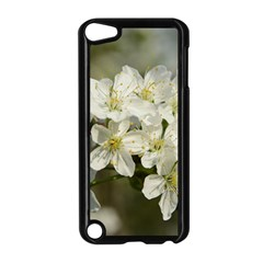 Spring Flowers Apple Ipod Touch 5 Case (black) by anstey