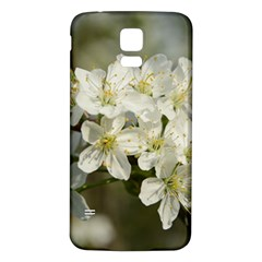 Spring Flowers Samsung Galaxy S5 Back Case (white) by anstey