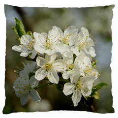 Spring Flowers Large Flano Cushion Case (one Side) by anstey