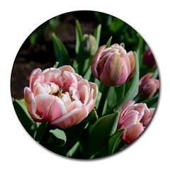 Tulips 8  Mouse Pad (round) by anstey