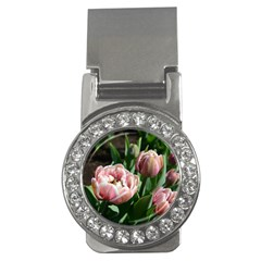 Tulips Money Clip (cz) by anstey