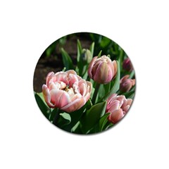Tulips Magnet 3  (round) by anstey