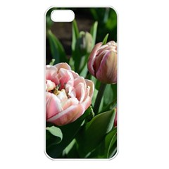 Tulips Apple Iphone 5 Seamless Case (white) by anstey