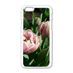 Tulips Apple Iphone 6 White Enamel Case by anstey