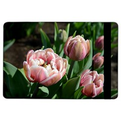 Tulips Apple Ipad Air 2 Flip Case by anstey