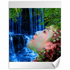 Fountain Of Youth Canvas 12  X 16  (unframed) by icarusismartdesigns