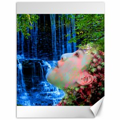 Fountain Of Youth Canvas 36  X 48  (unframed) by icarusismartdesigns
