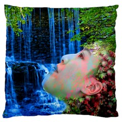 Fountain Of Youth Standard Flano Cushion Case (one Side) by icarusismartdesigns
