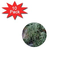 Rustic Grass Pattern 1  Mini Button (10 Pack) by ansteybeta