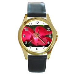 Bright Red Rose Round Gold Metal Watches by timelessartoncanvas