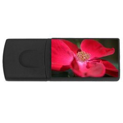 Bright Red Rose Usb Flash Drive Rectangular (4 Gb)  by timelessartoncanvas
