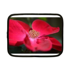 Bright Red Rose Netbook Case (small)  by timelessartoncanvas
