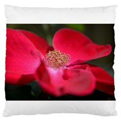 Bright Red Rose Large Flano Cushion Cases (one Side)  by timelessartoncanvas