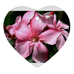 Pink Oleander Ornament (heart)