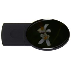 Lemon Blossom Usb Flash Drive Oval (2 Gb)  by timelessartoncanvas