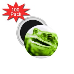 Green Frog 1 75  Magnets (100 Pack)  by timelessartoncanvas