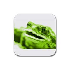 Green Frog Rubber Square Coaster (4 Pack)  by timelessartoncanvas