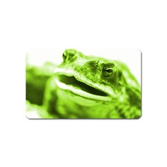 Green Frog Magnet (name Card) by timelessartoncanvas