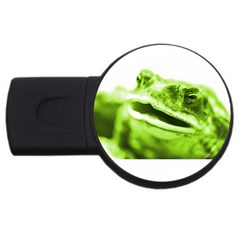 Green Frog Usb Flash Drive Round (4 Gb)  by timelessartoncanvas