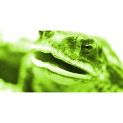 Green Frog You Are Invited 3d Greeting Card (8x4)  by timelessartoncanvas