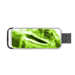 Green Frog Portable Usb Flash (two Sides) by timelessartoncanvas