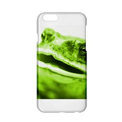 Green Frog Apple Iphone 6 Hardshell Case
