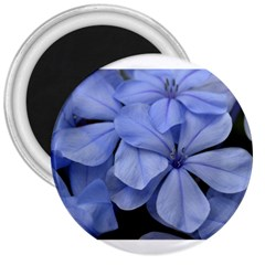 Bright Blue Flowers 3  Magnets by timelessartoncanvas