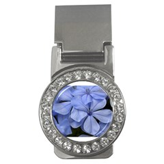 Bright Blue Flowers Money Clips (cz)  by timelessartoncanvas