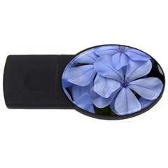 Bright Blue Flowers Usb Flash Drive Oval (2 Gb)  by timelessartoncanvas