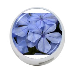 Bright Blue Flowers 4 Port Usb Hub (two Sides)  by timelessartoncanvas