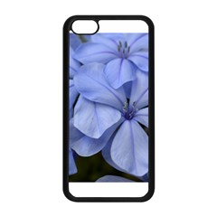 Bright Blue Flowers Apple Iphone 5c Seamless Case (black)