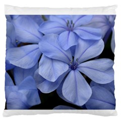 Bright Blue Flowers Large Flano Cushion Cases (two Sides)