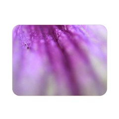 Purple Flower Pedal Double Sided Flano Blanket (mini)