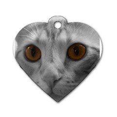 Funny Cat Dog Tag Heart (two Sides) by timelessartoncanvas