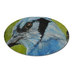 Blue Jay Oval Magnet by timelessartoncanvas