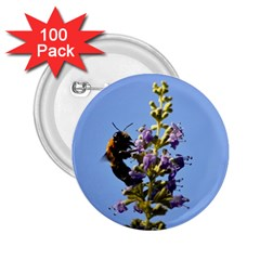 Bumble Bee 1 2 25  Buttons (100 Pack)