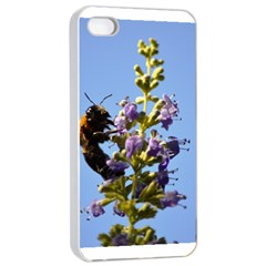 Bumble Bee 1 Apple Iphone 4/4s Seamless Case (white) by timelessartoncanvas
