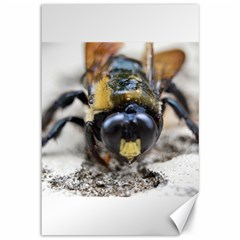 Bumble Bee 2 Canvas 12  X 18