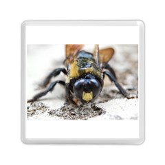 Bumble Bee 2 Memory Card Reader (square)