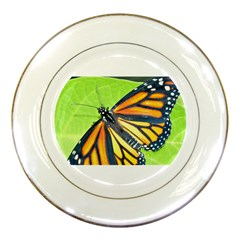 Butterfly 2 Porcelain Plates by timelessartoncanvas