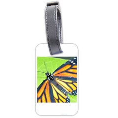 Butterfly 2 Luggage Tags (one Side)  by timelessartoncanvas