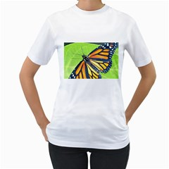 Butterfly 2 Women s T Shirt (white)  by timelessartoncanvas