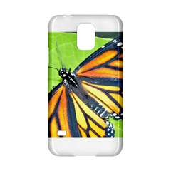 Butterfly 2 Samsung Galaxy S5 Hardshell Case  by timelessartoncanvas