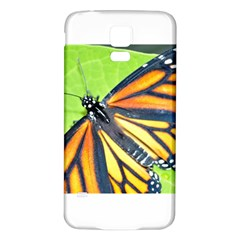 Butterfly 2 Samsung Galaxy S5 Back Case (white) by timelessartoncanvas