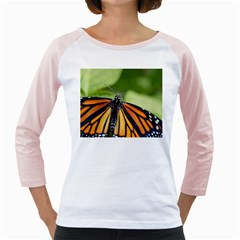 Butterfly 3 Girly Raglans by timelessartoncanvas