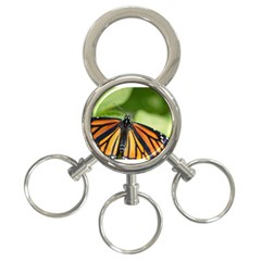 Butterfly 3 3 Ring Key Chains