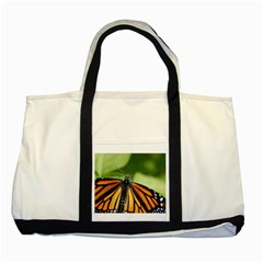 Butterfly 3 Two Tone Tote Bag  by timelessartoncanvas