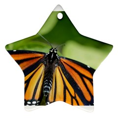 Butterfly 3 Star Ornament (two Sides)