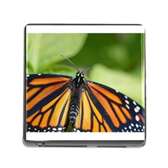 Butterfly 3 Memory Card Reader (square) by timelessartoncanvas