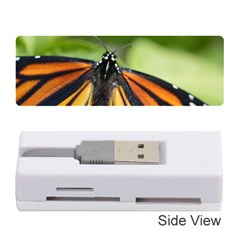 Butterfly 3 Memory Card Reader (stick)  by timelessartoncanvas